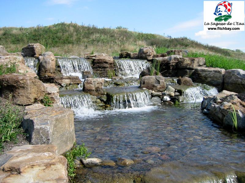 P pini re aquatique de fitch bay bienvenue for Conception jardin d eau